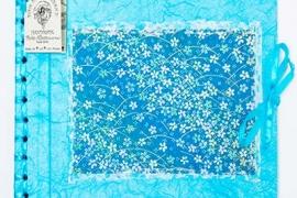 Japanese-Range-Light-Blue-Spring-Flowers